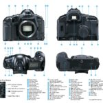 camera body scheme